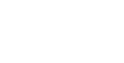 Gullwing logo